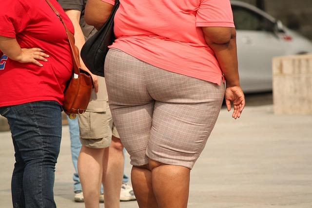 diety, metabolismus, obezita